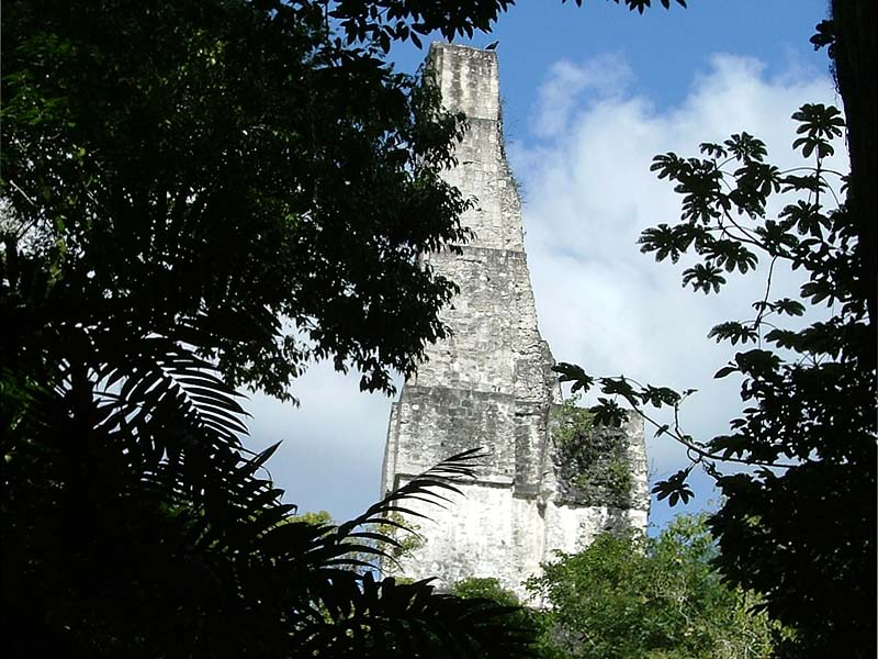 Temple of the Bichepalous Serpent